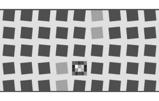 Sineimage SFRplus Test Chart 223mm x 356mm