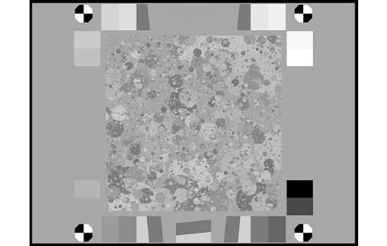 Sineimage Black & White Spilled Coins Dead Leaves Test Chart YE0265