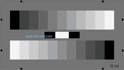 TE165 A 11-STEP GRAY SCALE TEST CHART 16:9 / BT.709 Reflectance